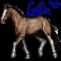 avatar oct 2014