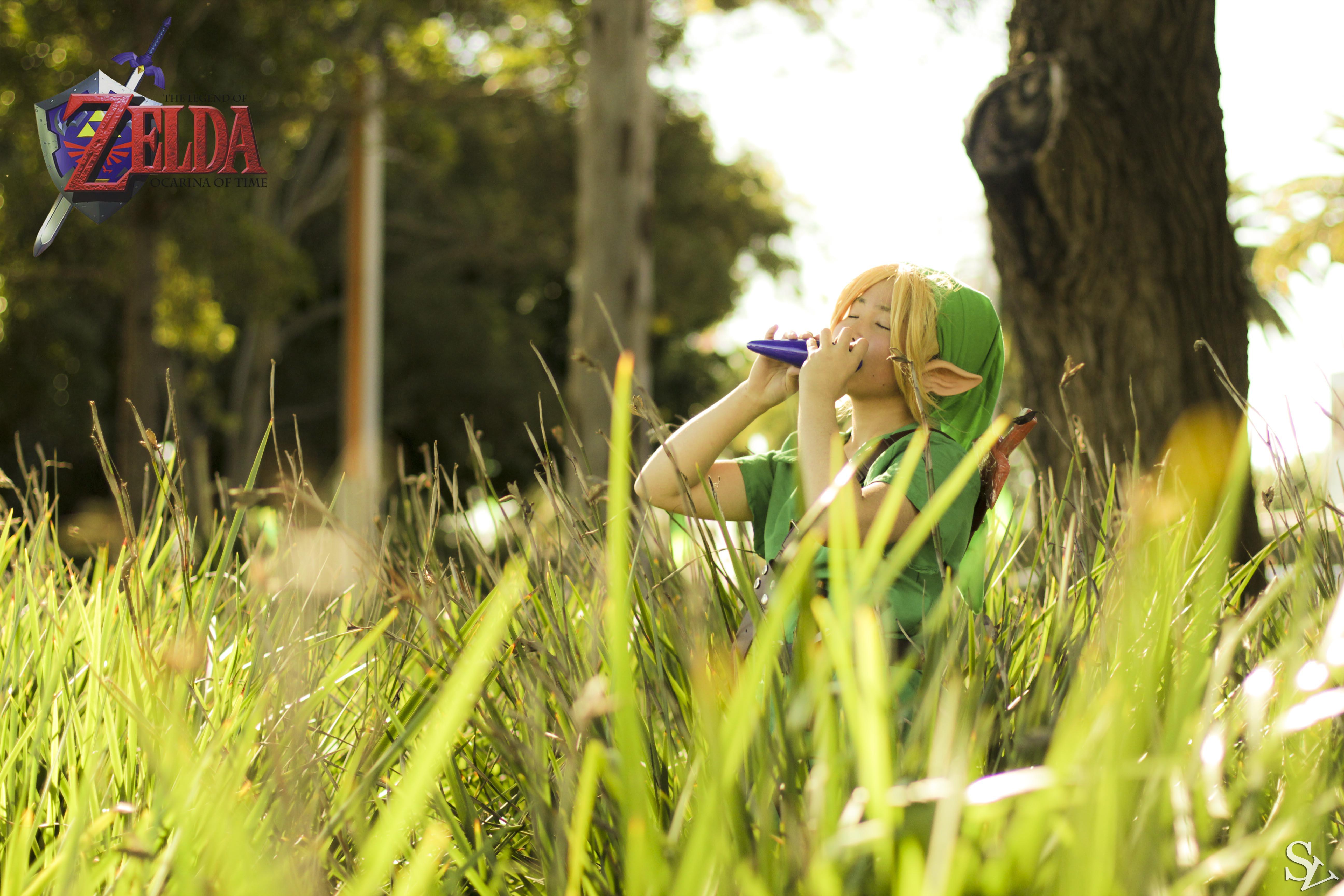Legend of Zelda: Link in the wild by SteveFattyVuong