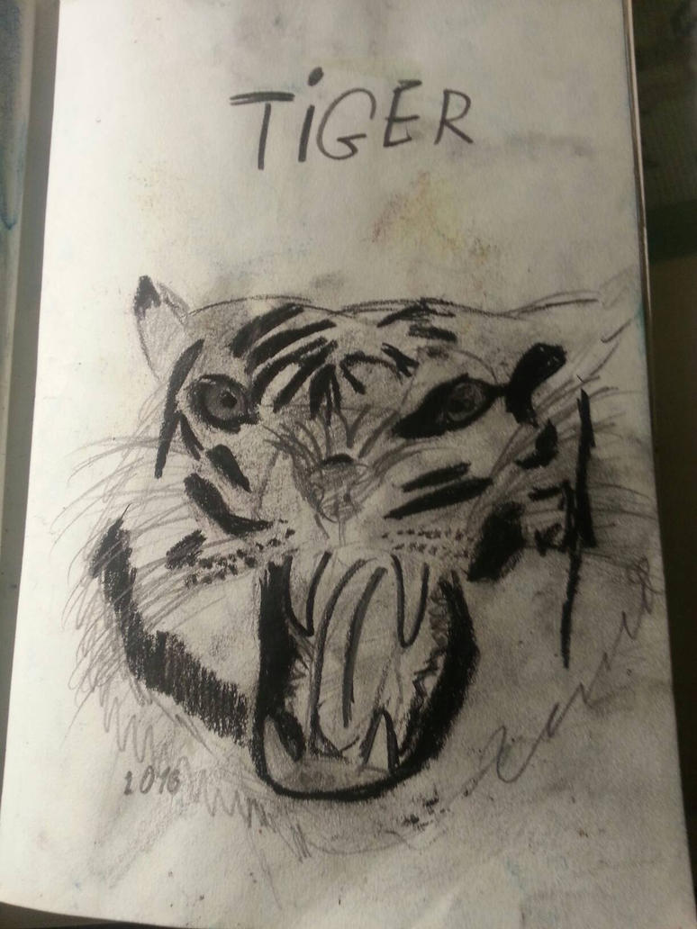 Tiger by PolaLemurArt