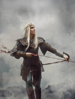 The Hobbit: The Battle of the Five Armies- Legolas