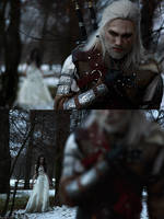The Witcher - A Grain of Truth by MilliganVick