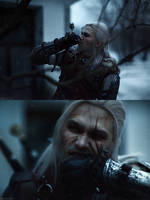 The Witcher - A Grain of Truth