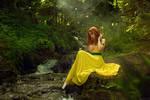 The Witcher - Ida Emean