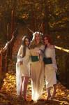 TW:WH - Ladies Of The Woods