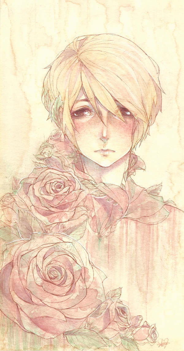 Boy of Roses by ramuramu