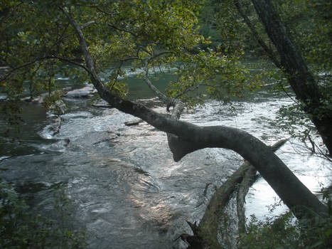 Another Chattahoochee View