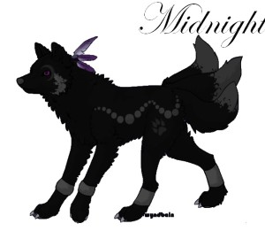 Midnightshewolf's Profile Picture