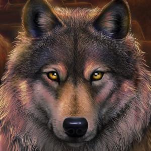 DIOSCUROS87's Profile Picture