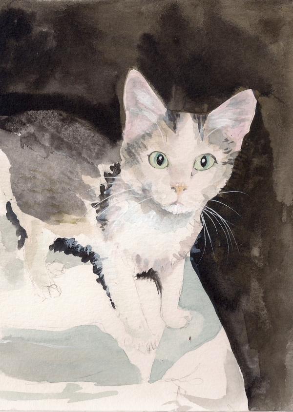 Cat32 by OneCrazyCleric