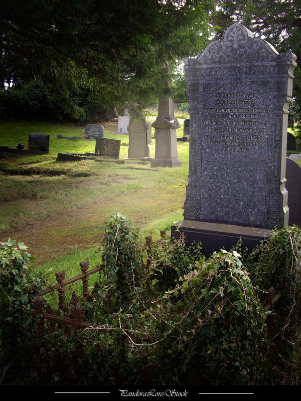 Nutt's V2.00 Grave_02_by_PandoraLore_Stock