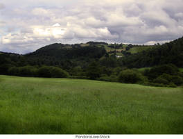 Field 1 by AnitaJoy-Stock