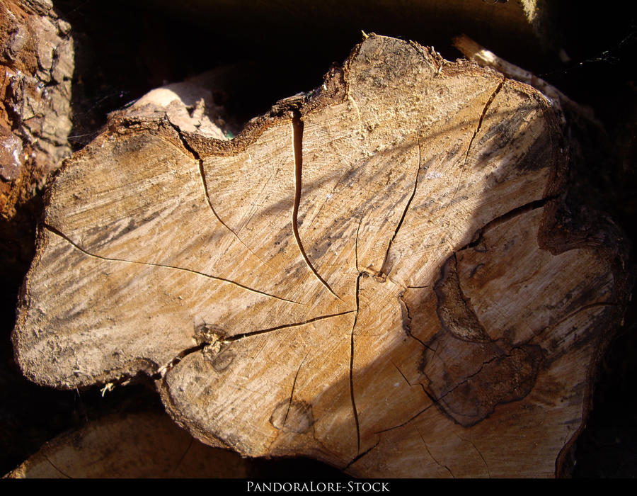 Wood Texture 07 by AnitaJoy-Stock