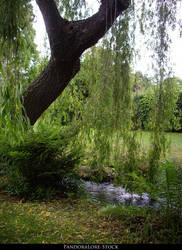 River Willow Tree Scene 01 by AnitaJoy-Stock