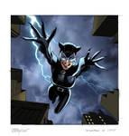 Catwoman Upperdeck Vs. Card
