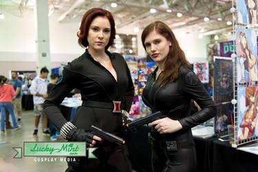 Black Widow And Black Widow