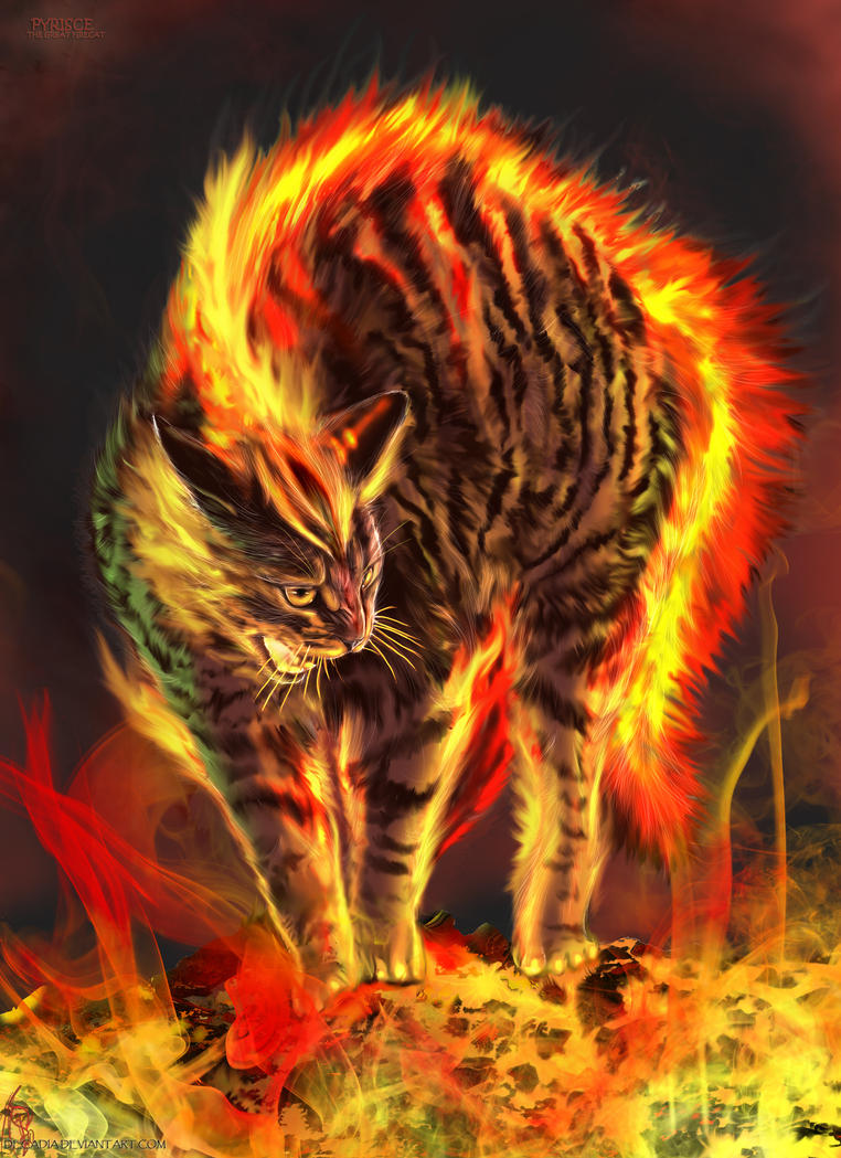 PYRISCE The FireCat by Decadia on DeviantArt
