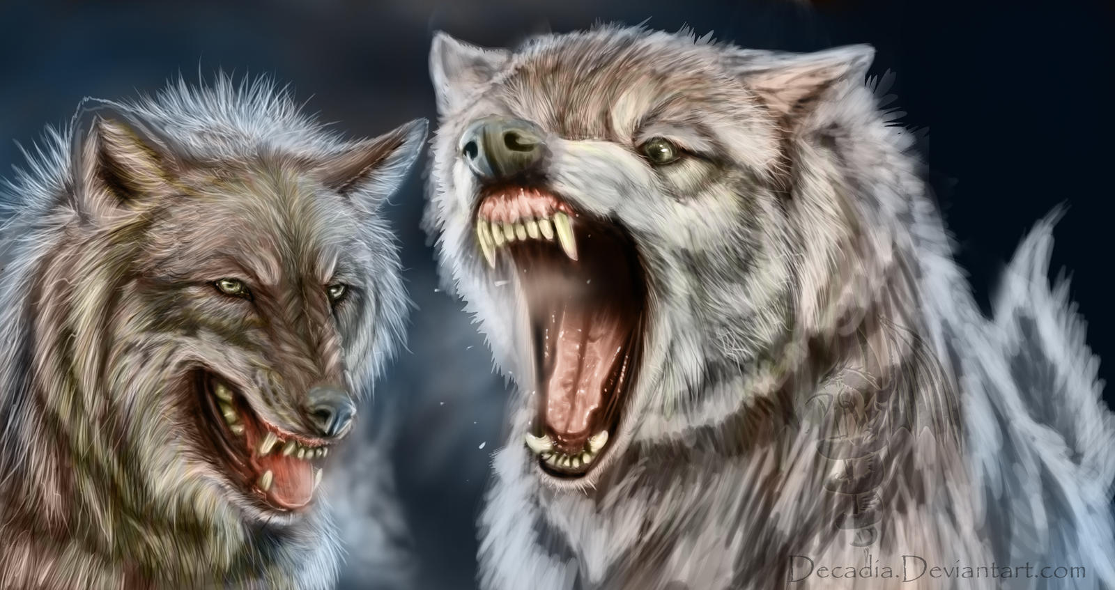 mad wolf drawings - photo #32