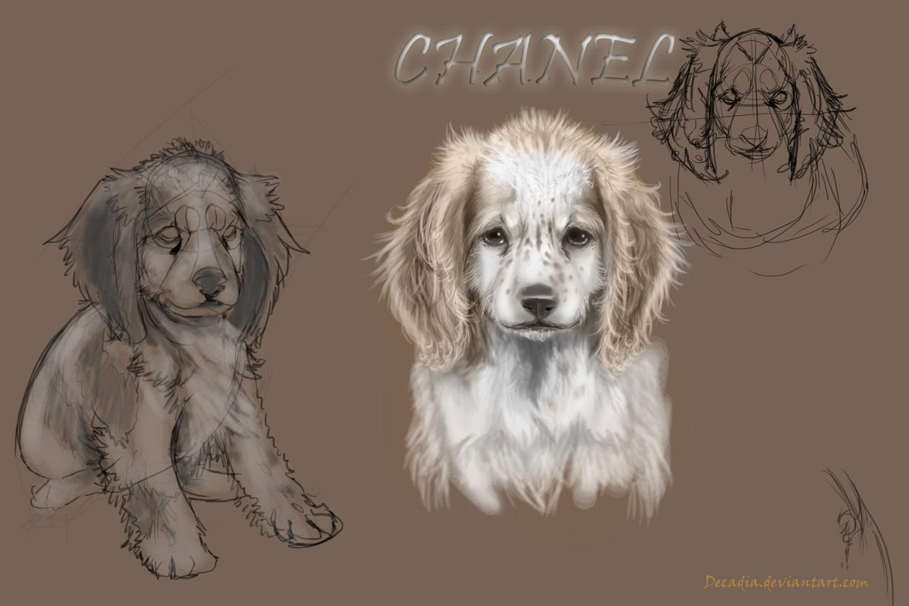 Chanel The Puppy by Decadia