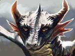 Young Dragon
