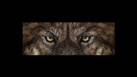 Decadia Wolf