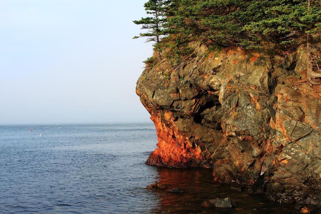 Rocky Coast of Maine by Celem