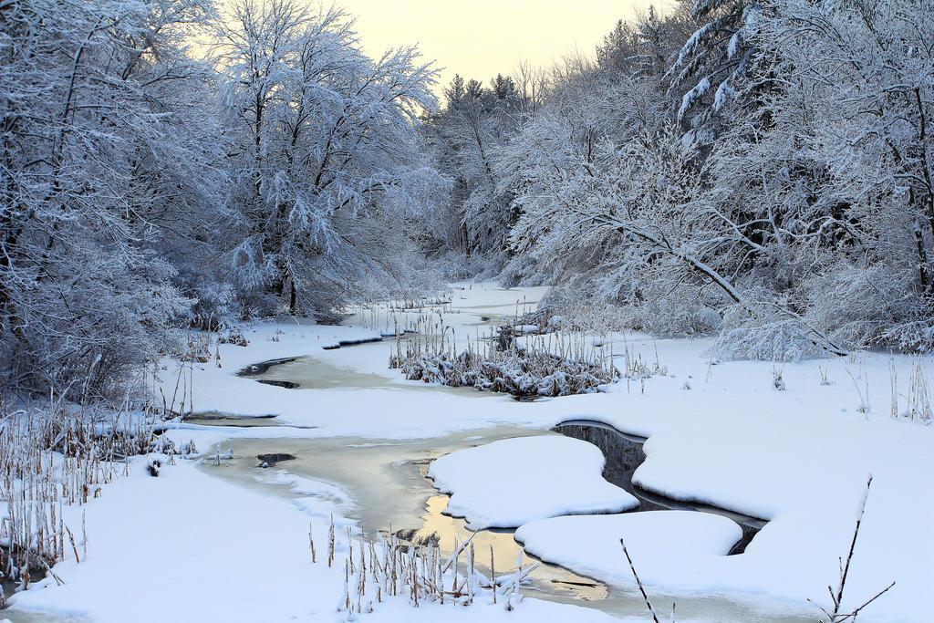 Winter Stream by Celem