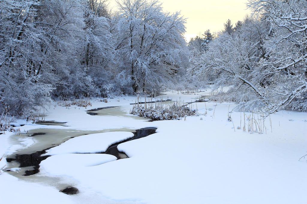 Stock Winter Stream by Celem