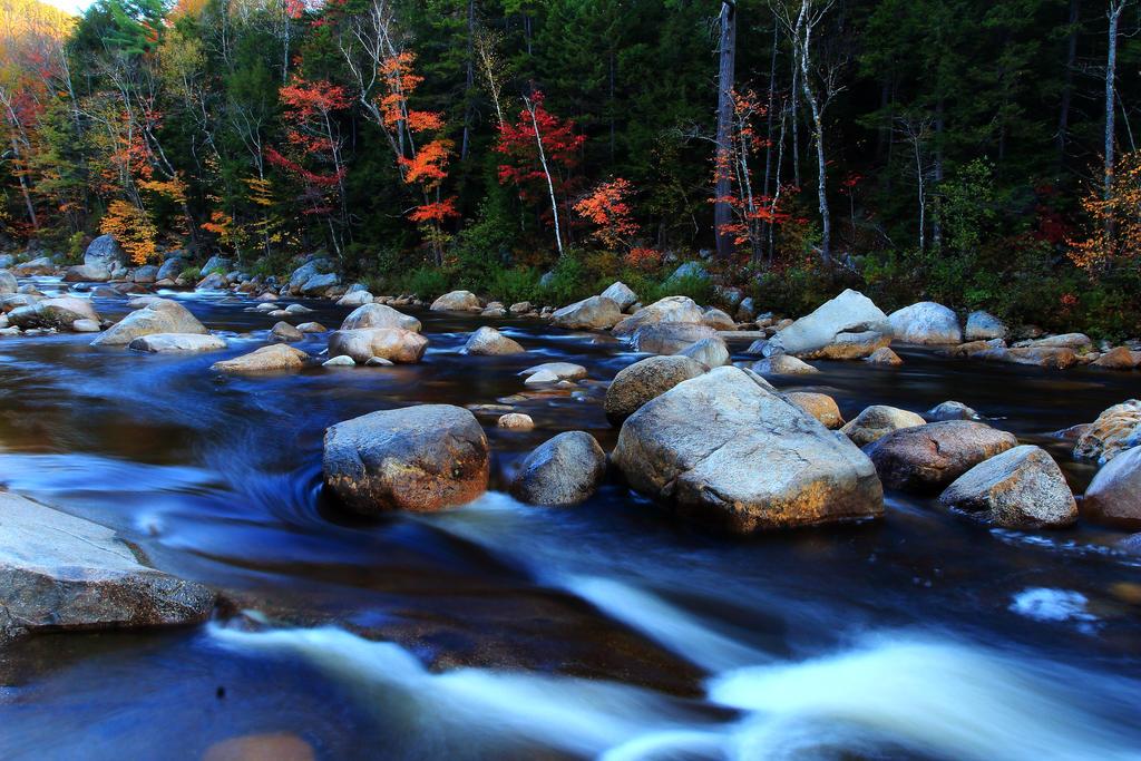 Divna priroda - Page 5 Swift_river_flows_into_autumn_by_celem-d6pv53h
