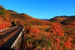 Railbridge on a clear day