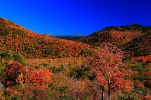 Stock: Mount Washington over the hills by Celem