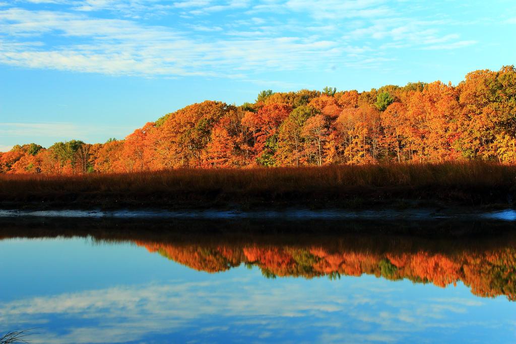 Stock Reflecting River by Celem