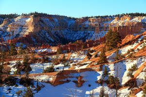 Stock: Winter at Bryce Canyon by Celem