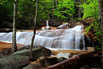 Stock: Waterfalls in the Forest
