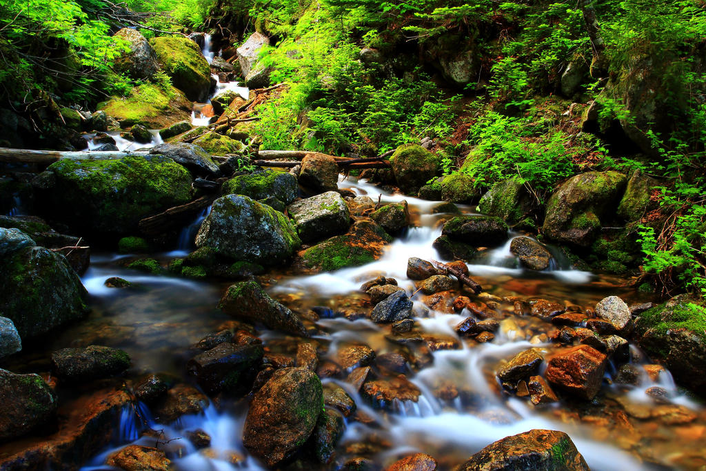 Stock: Small Stream and Shiny Rocks by Celem