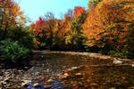 Stock: Rocky Autumn Stream