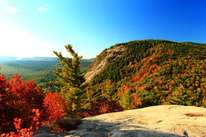 Stock: Autumn Ledge by Celem