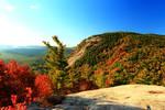 Stock: Autumn Ledge