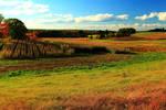 Stock: Autumn Fields in Stratham