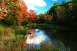 Stock: Autumn Stream