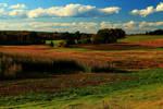 Stock: Rolling Hills Farmland