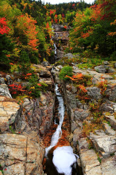 Stock: Silver Stream in Autumn