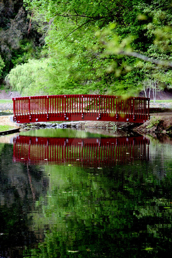 The Bridge by Scubaozgirl
