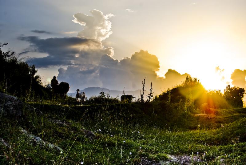 beautiful sunseet by Shazy8