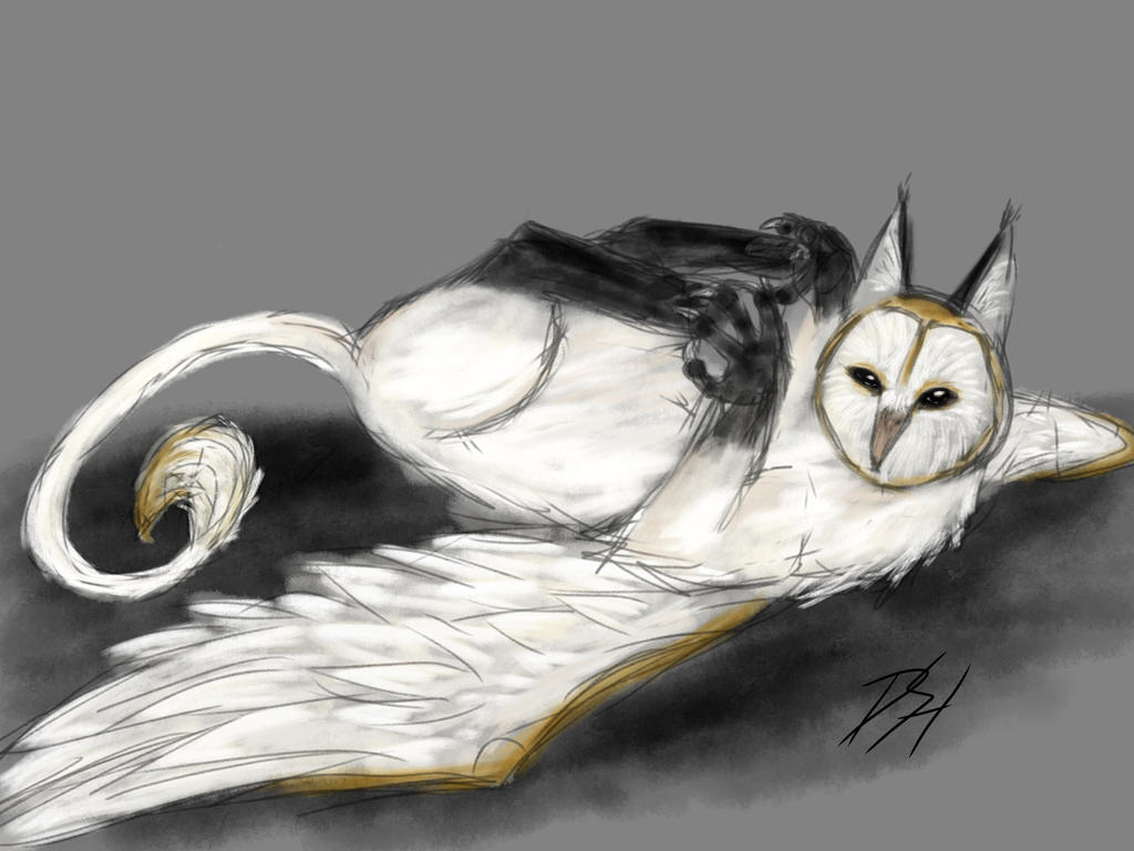 Owl griff by Rimfrost2
