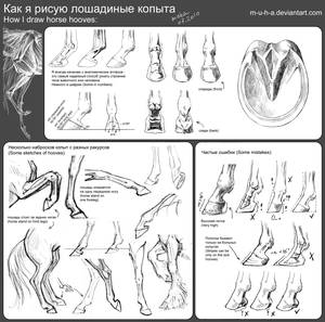 tutorial - horse hooves by m-u-h-a