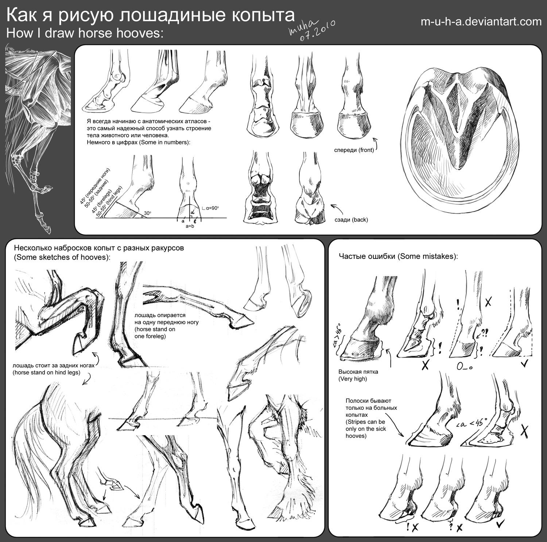 tutorial - horse hooves by m-u-h-a on DeviantArt