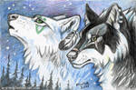 ACEO Spirits of North