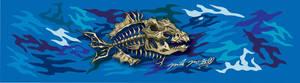 Trigger Fish Deck