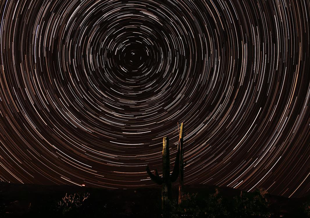 Desert Night by RayM0506