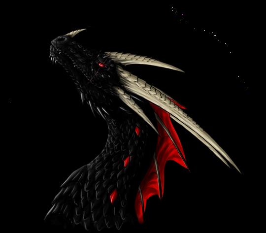 Zoroha's Profile Picture